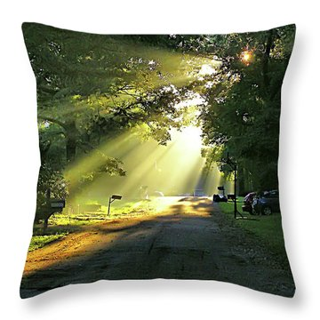 Throw Pillow featuring the photograph Morning Light by Brian Wallace