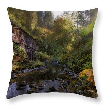 Morning Light Cedar Creek Grist Mill Throw Pillow by David Gn