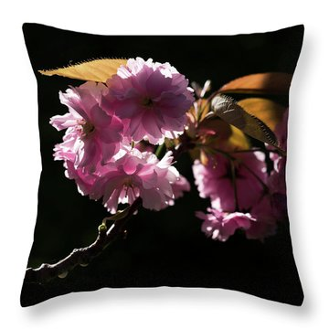 Throw Pillow featuring the photograph Morning Light by Helga Novelli