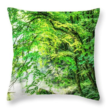 Morning Light In The Forest Throw Pillow