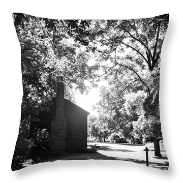Morning Light In The Woods Throw Pillow