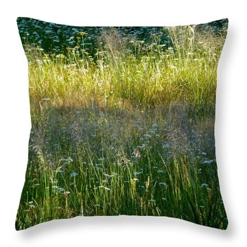 Morning Light On Grant Meadow Throw Pillow
