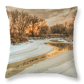 Morning Light On The Riverbank Throw Pillow