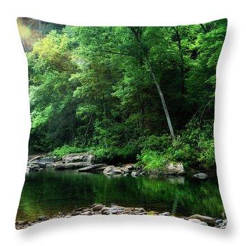 Morning Light On Williams River  Throw Pillow
