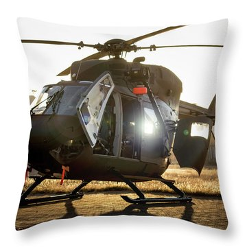 Throw Pillow featuring the photograph Morning Light by Paul Job