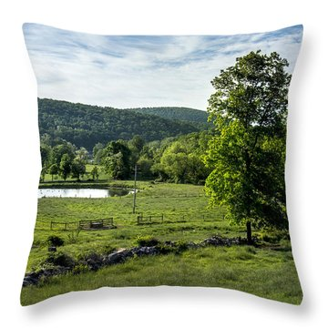 Morning Meadow Throw Pillow