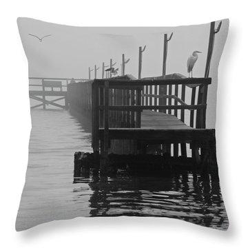 Throw Pillow featuring the photograph Morning Meeting by Joe Jake Pratt