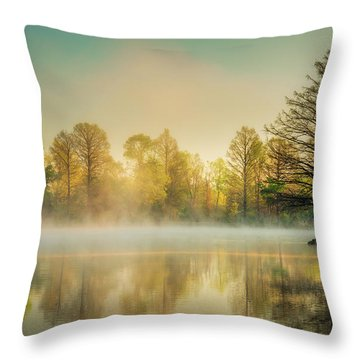 Throw Pillow featuring the photograph Morning Mist At Honor Heights  by James Barber