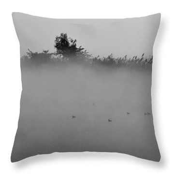 Morning Mist At Wetland Of Harike Throw Pillow