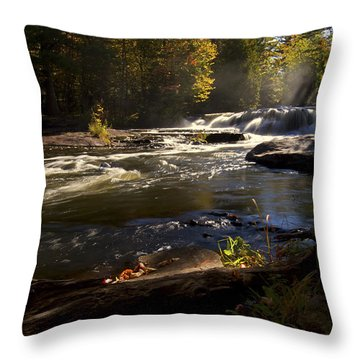Throw Pillow featuring the photograph Morning Mist by Heather Kenward