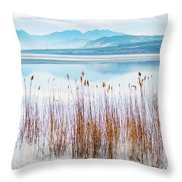 Morning Mist On The Lake Throw Pillow
