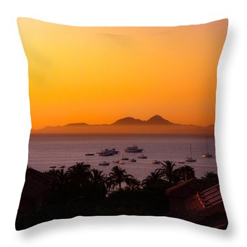 Throw Pillow featuring the photograph Morning Mist by Scott Carruthers