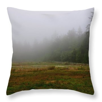Throw Pillow featuring the photograph Morning Mist Solitude by Tikvah's Hope