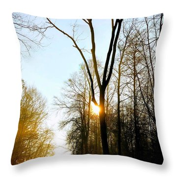 Morning Mood In The Forest Throw Pillow