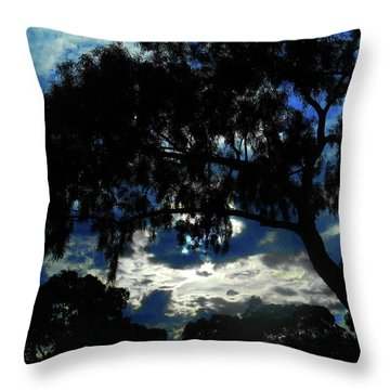 Throw Pillow featuring the photograph Morning Mood by Mark Blauhoefer