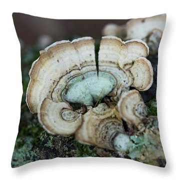Morning Mushroom Throw Pillow