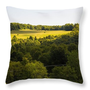 Morning Throw Pillow by Nance Larson