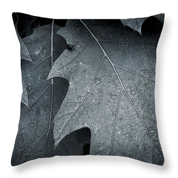 Morning Oak Throw Pillow