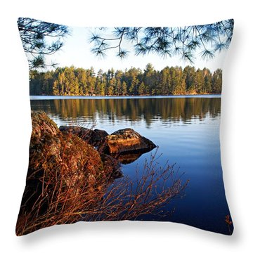 Morning On Chad Lake 2 Throw Pillow by Larry Ricker