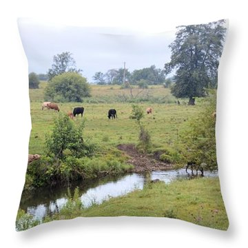 Morning On Coldwater Throw Pillow