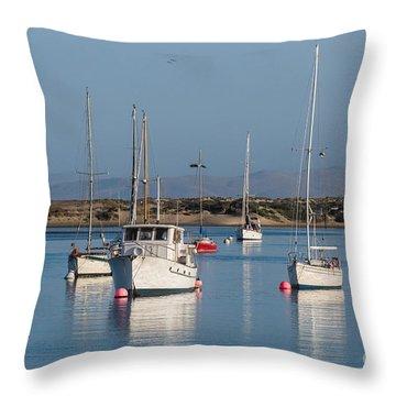 Morning On Morro Bay B3984 Throw Pillow
