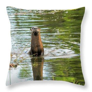 Morning Otter Encounter Throw Pillow