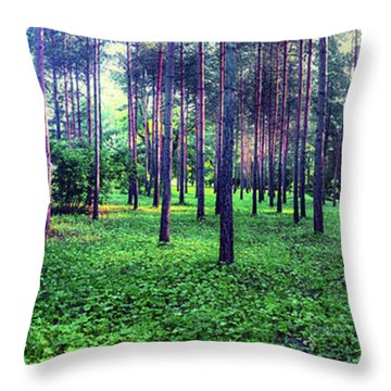 Throw Pillow featuring the photograph  Morning Panorama Of  Catherine Park by Ariadna De Raadt