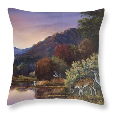 Morning Peace Throw Pillow by Sean Conlon