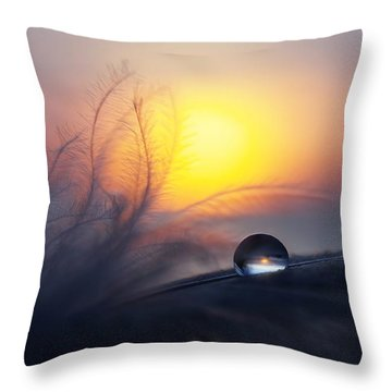 Droplets Throw Pillows