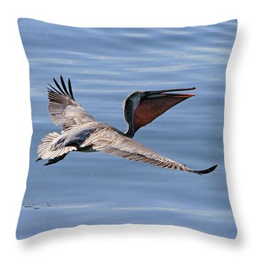 Morning Pelican Throw Pillow