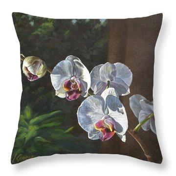 Morning Phaleanopsis Throw Pillow