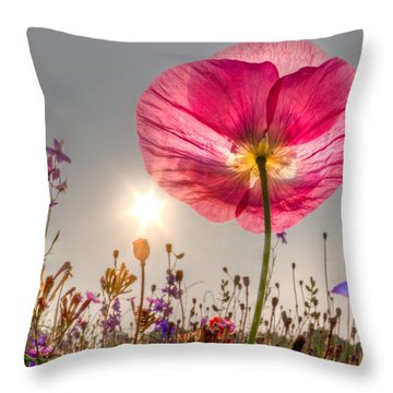 Throw Pillow featuring the photograph Morning Pink by Debra and Dave Vanderlaan