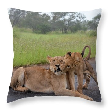 Morning Play Throw Pillow