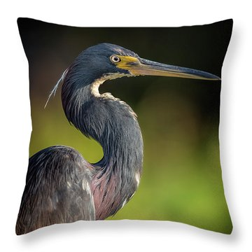 Morning Portrait Throw Pillow