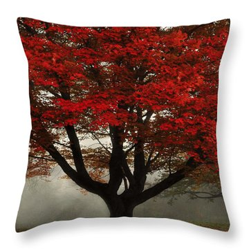 Throw Pillow featuring the photograph Morning Rays In The Forest by Ken Smith