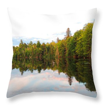 Morning Reflection Throw Pillow by Teresa Schomig