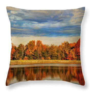 Morning Reflections Throw Pillow by Darren Fisher