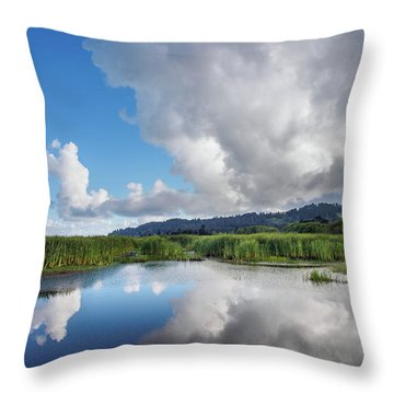 Throw Pillow featuring the photograph Morning Reflections On A Marsh Pond by Greg Nyquist