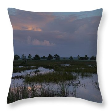 Morning Reflections Over The Wetlands Throw Pillow