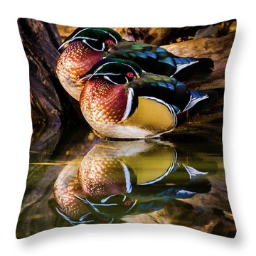 Morning Reflections - Wood Ducks Throw Pillow