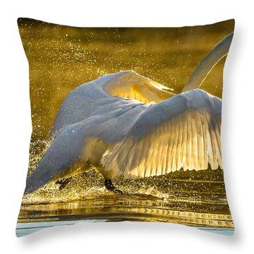 Morning Rush Throw Pillow