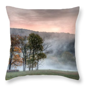 Morning Serenity Throw Pillow by James Barber