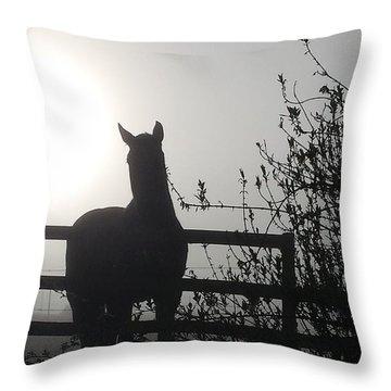 Morning Silhouette #1 Throw Pillow