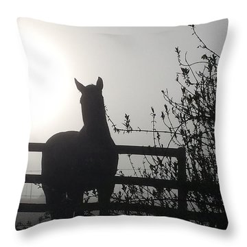 Morning Silhouette #1 Throw Pillow