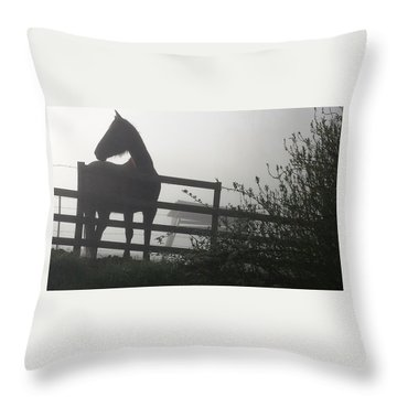 Morning Silhouette #2 Throw Pillow