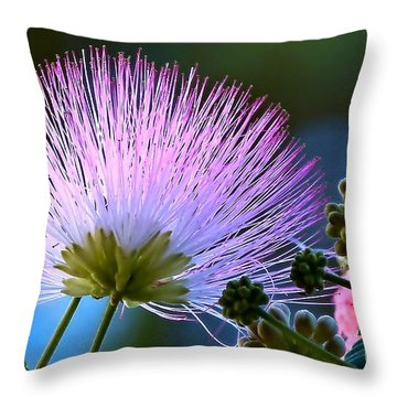 Morning Silk Throw Pillow