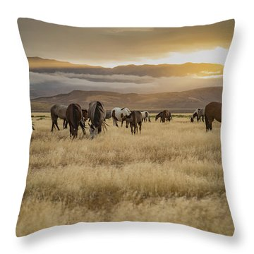 Morning Splendor Throw Pillow