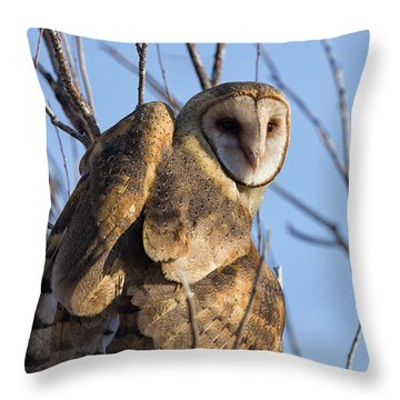 At The Dawning Of The Day Throw Pillow