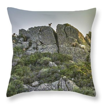 Morning Sun Lit Rocky Hill Greece Throw Pillow