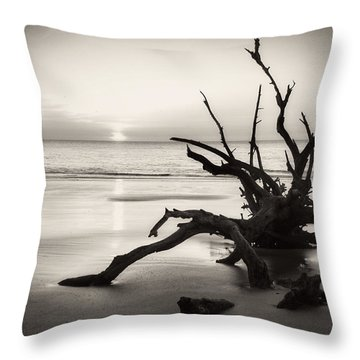 Morning Sun On Driftwood Beach In Black And White Throw Pillow